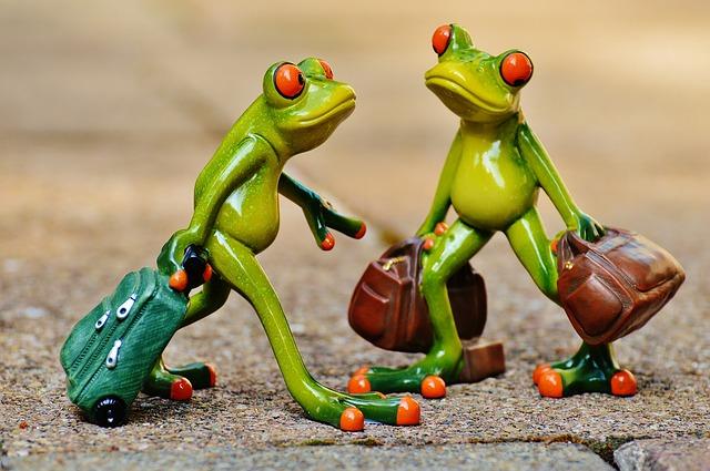 žabky, kufry