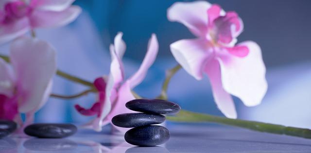 kamínky, květiny