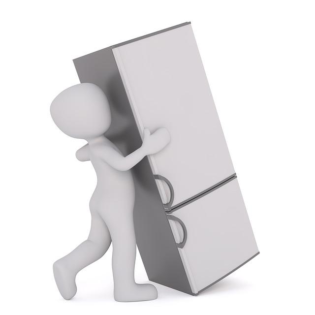 stěhování lednice.jpg