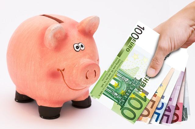 prasátko a euro bankovky